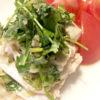 蒸し鶏の葱パクチーソース