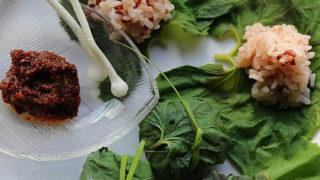 フキの葉のご飯包みと特製味噌