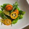 春キャベツと金柑の塩麹和え